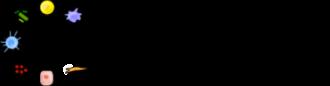 Ordovas-Montanes Lab